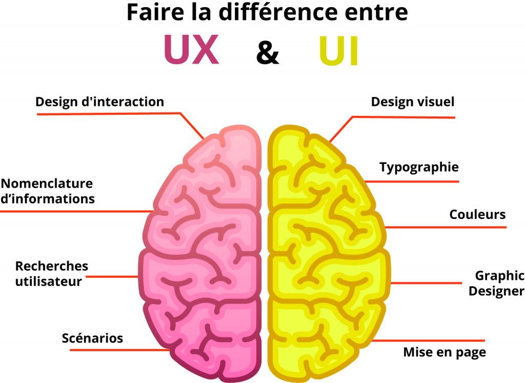 illustration cerveau UI UX